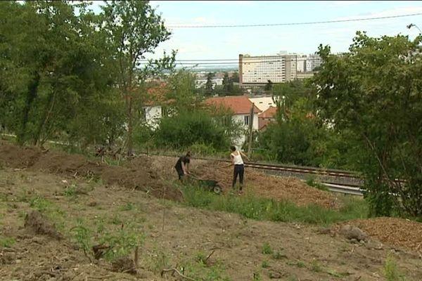 La ferme urbaine devrait commencer à produire au printemps 2018.