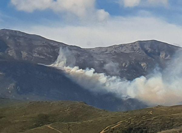 Le feu s'est déclaré à La Pedina, sur les hauteurs de Pietracorbara