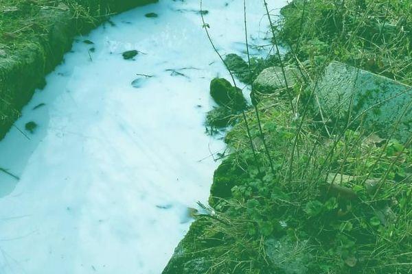 La laiterie de Theix (Puy-de-Dôme) rejette régulièrement ses eaux usées dans l'Auzon. (DR)