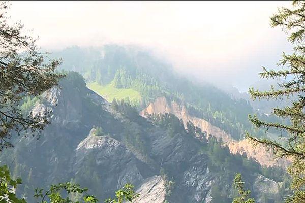 La forêt de Boscodon dans les Hautes-Alpes