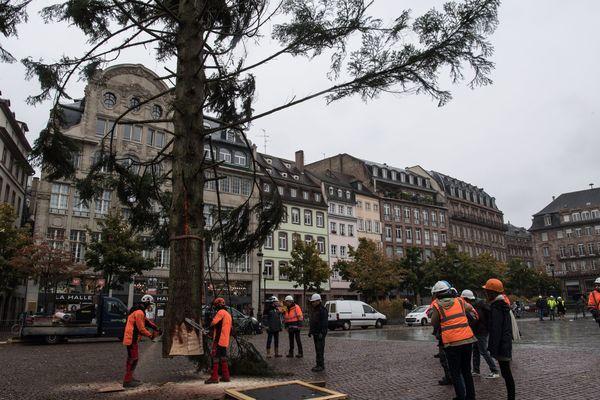 Le grand sapin du marché de Noël 2019 mesure 30 mètres