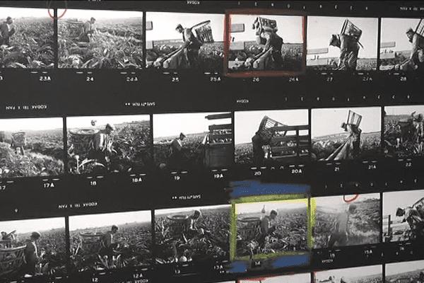 Près de 600 photos réparties dans trois galeries sont exposées