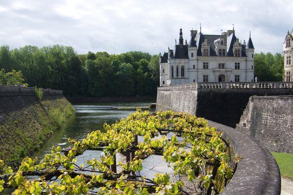 Le château de Chenonceau - Photo d'illustration