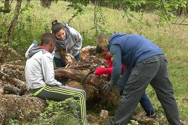 Trois jeunes participent à ces chantiers pendant les vacances de Pâques à Besançon.