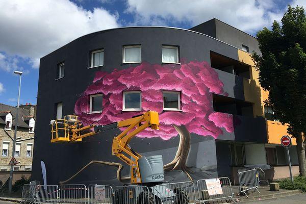 """Au 6 rue Félix Ledantec, Saint-Brieuc, le cerisier du Japon en fleur, de Pak One, un graffeur breton qui se dit """"de la vieille école"""" (old school)"""