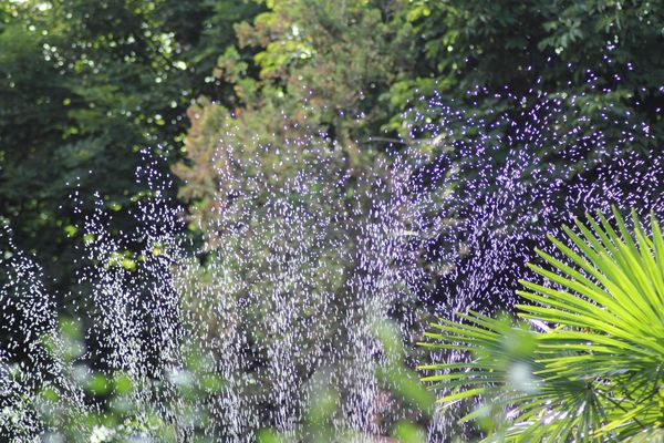 De nouvelles restrictions d'eau en Loire-Atlantique
