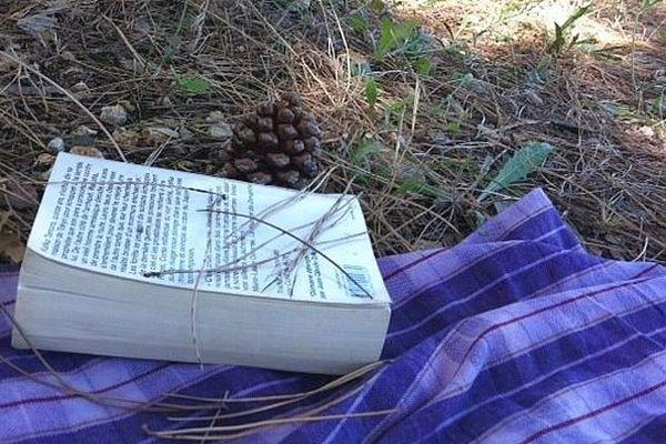 Vacances en Languedoc-Roussillon, La sieste à l'ombre des pins