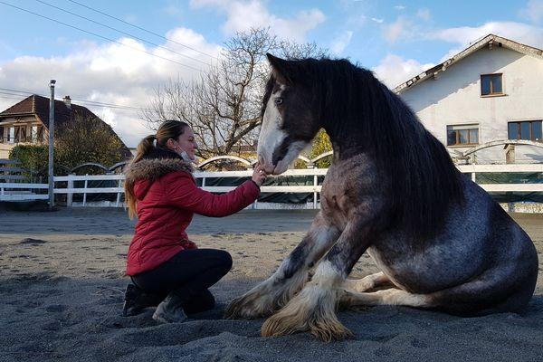 """Les chevaux comprennent mieux lorsqu'on leur parle """"avec une vois plus aiguë"""" et des """"intonations exagérées"""""""