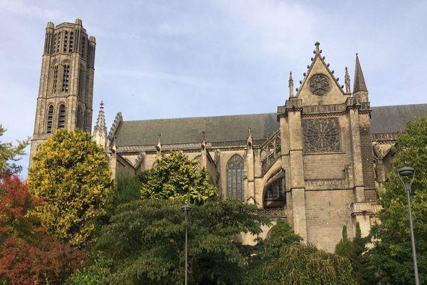L'animal a été tué près de la cathédrale St-Etienne de Limoges le 8 octobre 2018.