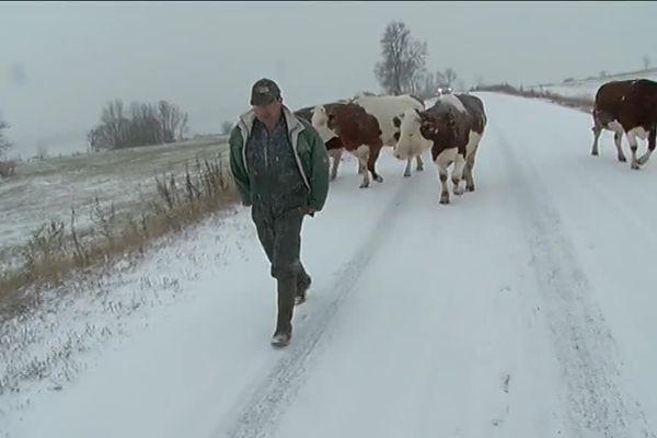 5 cm de neige ce 8 novembre en Lozère