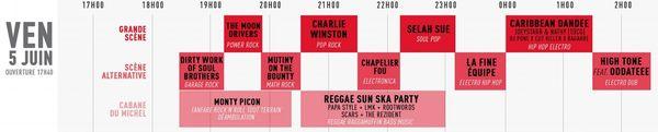 La programmammation des concerts du vendredi 5 juin 2015 au Jardin du Michel.