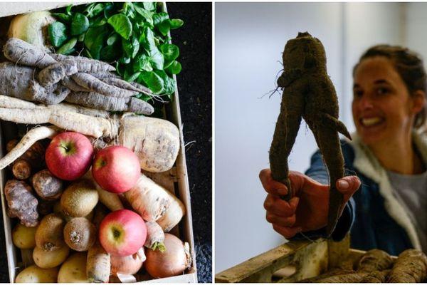 Les paniers de légumes des producteurs locaux sont offerts aux étudiants dans le besoin