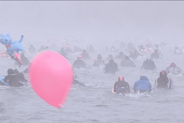 Dans les eaux du Rhône ce 24 janvier 2016
