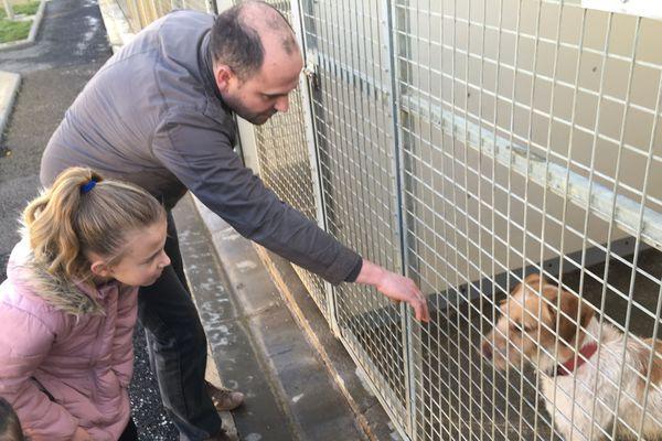 Adopter plutôt qu'acheter en animalerie, c'est le choix que font de plus en plus de foyers à Clermont-Ferrand.