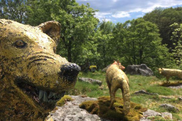 Des loups fantastiques ont réinvesti les bois de Chastreix...