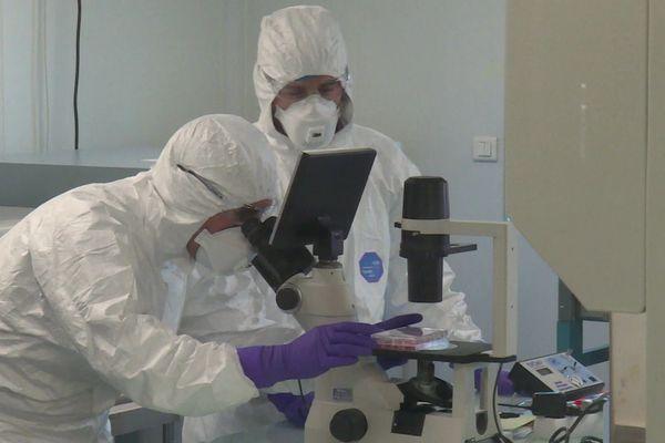 Coronavirus : les pistes de traitement examinées par le laboratoire Virpath à Lyon