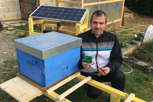 Quand l'électronique vient au service de la nature pour sauvegarder nos abeilles et garder un œil sur leurs petites vies. David Gilloux, l'apiculteur-ingénieur de Lonny dans les Ardennes.