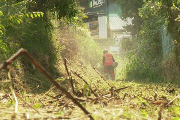 Autre élément dans cette campagne de prévention des risques d'inondations : le débroussaillement des vallons de la commune de Biot.