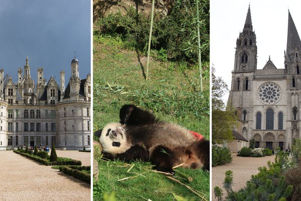 Le château de Chambord, un panda de Beauval, la cathédrale de Chartres.
