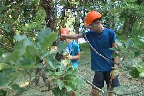Les jeunes en plein travail à La Groutte dans le Cher