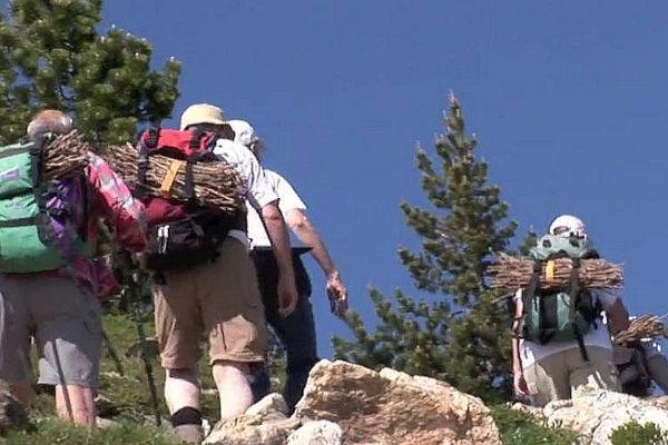 Les Catalans acheminent des fagots au sommet du Canigou avant le brasier du 23 juin.