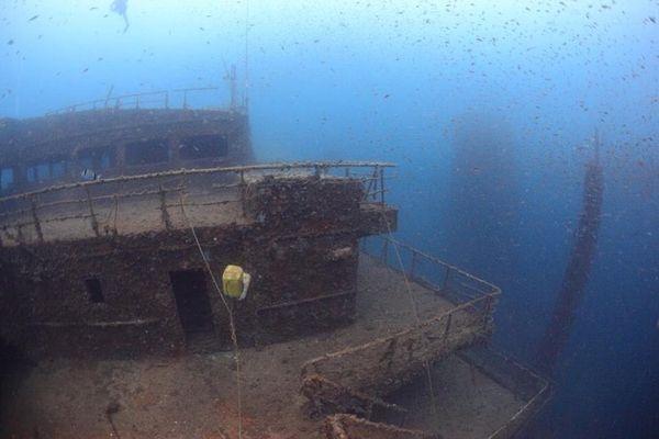 Des bancs de poissons autour de l'épave du Haven, à 80 m de fond.