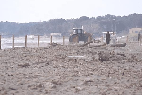 L'intervention des tracteurs sera désormais limitée sur la plage de Furiani