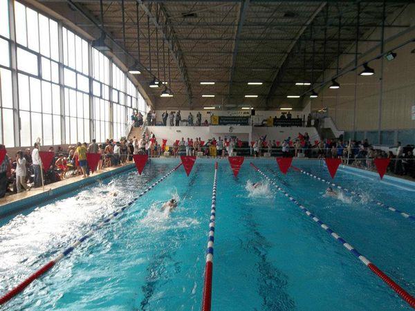 Les lignes d'eau de compétition à la piscine d'Avesnes-sur-Helpe