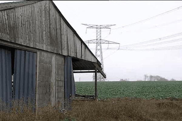 La ligne a très haute tension est située à proximité de l'exploitation laitière.