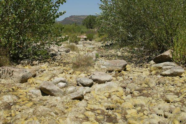 La crise de sécheresse a été déclarée par la préfecture du Var le mardi 3 août.