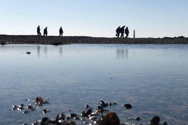 Des pêcheurs à pied pour les grandes marées sur l'île de Ré au pied du phare de Chauveaux.