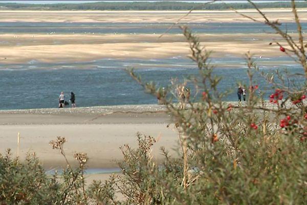 Les promeneurs ont été piégés par la marée au niveau de la pointe du Hourdel, en Baie de Somme.