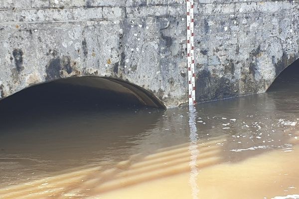 Le Cosson, au niveau de la Ferté-Saint-Aubin dans le Loiret le samedi 6 mars.