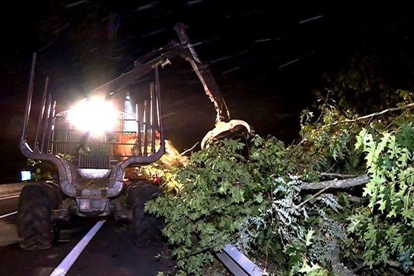 Abattage d'arbres sur l'autoroute A 20 à Limoges