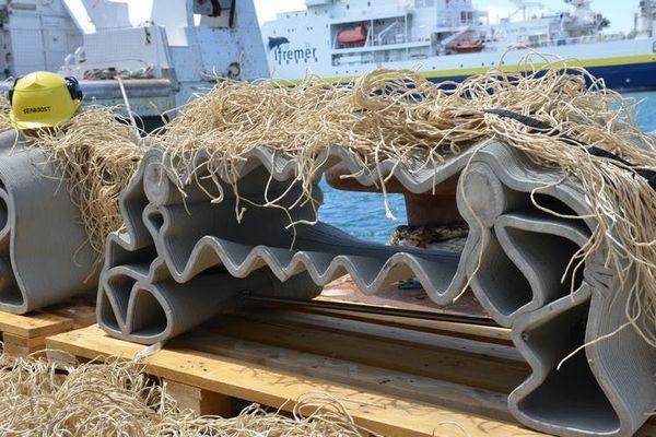 Voici les blocs de la société Seaboost basée à Montpellier : des herbiers artificiels, de la posidonie imitée en polypropylène, et des blocs de béton ondulés, réalisés en impression 3D ; ils ont été immergés en juin 2020.
