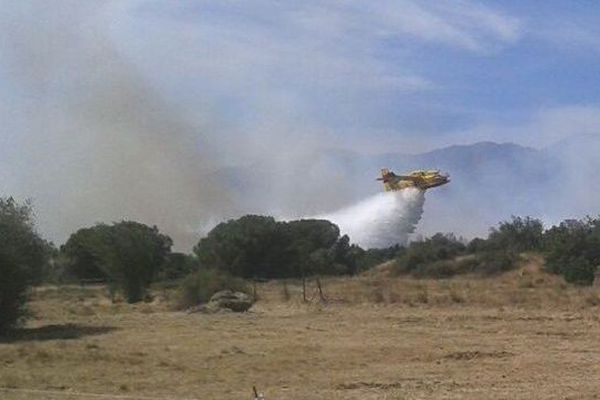 L'un des Canadair mobilisés sur l'incendie de Montalba-le-Château, dans les Pyrénées-Orientales - 11 août 2016