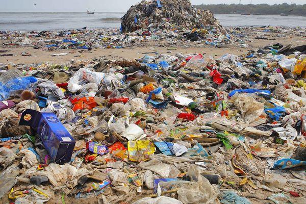 Le World CleanUp Day, grand nettoyage mondial à travers le monde.