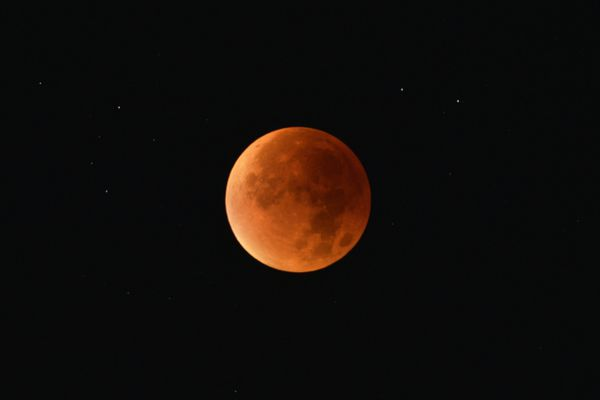A la faveur d'un ciel parfaitement dégagé, les ligériens ont pu parfaitement observer la lune de sang cette nuit.