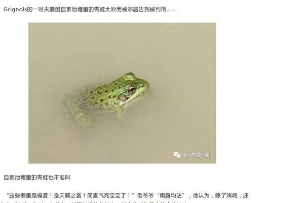 La polémique des grenouilles de Grignols a fait le tour du monde... en passant par la Chine