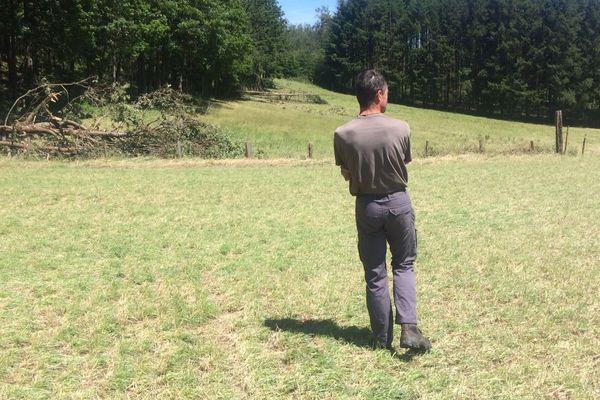 Saint-Maurice-en-Gourgois : cet éleveur de vaches laitières en bio a perdu toutes ses prairies et céréales pour nourrir ses bêtes.