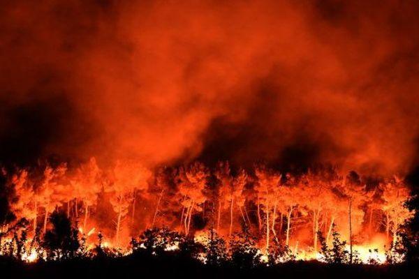 Depuis mercredi, les feux qui ravagent le Sud-est, du Var à l'Hérault