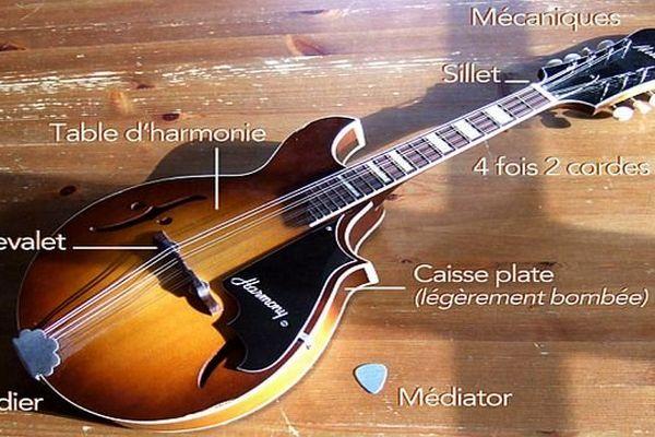 La mandoline - archives