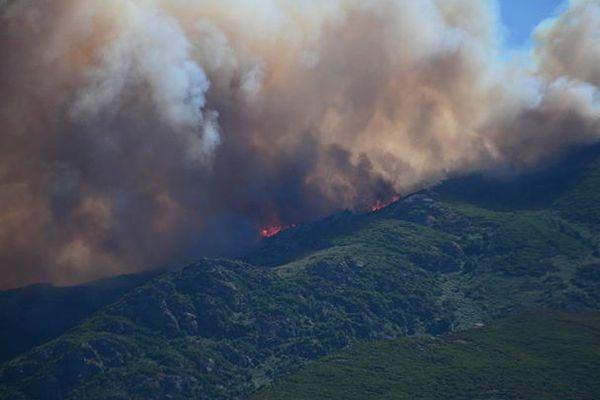 Le feu a détruit 1 800 hectares de végétation