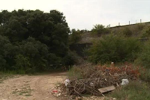 Nîmes - Les abords du lieu de la découverte du corps près de la route de Lédignan - 2015.
