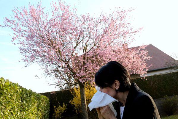"""L'allergie au pollen est couramment nommée """"rhume des foins"""", rhinite allergique ou pollinose."""