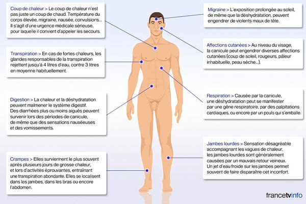 Les risques liés à la canicule sont nombreux, souligne l'Institut national de protection et d'éducation pour la santé (Inpes).