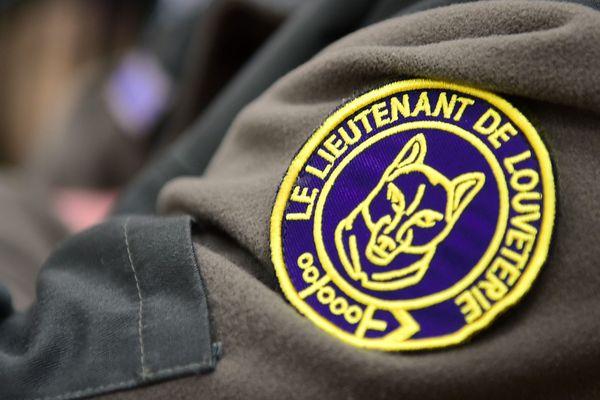 La Haute-Loire compte 21 lieutenants de louveterie, chargés de réguler les populations d'animaux sauvages.