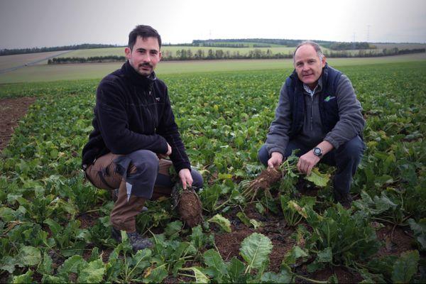 Simon et Alain, agriculteurs inquiets sur cette récolte 2020