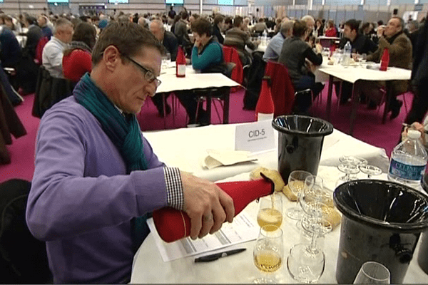 Les juges du concours agricole dégustent le cidre à l'aveugle