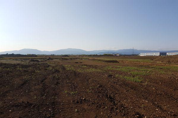 L'entrepôt s'élèvera sur les meilleures terres agricoles d'Ensisheim, selon Alsace Nature
